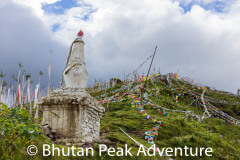 The stupa where you can either go to sky burial or find yourself lost in the woods.