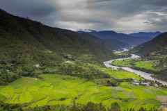 Punakha Valley taken from Khamsum Yuelley