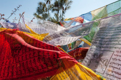 Prayer flags at BBS tower