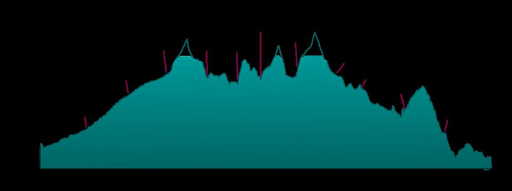 Elevation profile for the Laya Gasa Trek