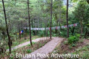 Path to Tango Monastery
